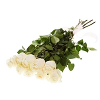 9 белоснежных роз