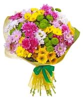 Яркие хризантемы
